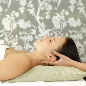 hårpleje og skønhed - wellness på topplan for dem som går op i sundhed og skønhed